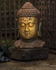 Buddah In the Brooklyn Hood - Remix (Mule67) Tags: usa statue brooklyn oregon portland nikon hood buddah 5photosaday d5000