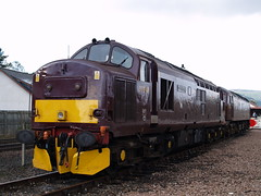 37248 and 47787 (divnic) Tags: station scotland highlands track traintracks tracks scotrail trainstation locomotive tractors aviemore orientexpress kincraig kingussie rollingstock invernessshire wcr englishelectric boatofgarten preservedrailway class47 class37 locharkaig dieselelectric dieselelectriclocomotive theroyalscotsman 37248 brushtraction westcoastrailways englishelectrictype3 47787 britishrailclass47 britishrailclass37 strahspeyrailway