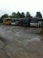 Tropical Wing's, or rain:) (duple425) Tags: coach gale motors dons duple425