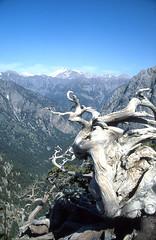 - Lefka Ori (angelobike) Tags: mountain greece crete ori lefka eikones elladas