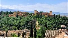 Granada : The Alhambra (Pantchoa) Tags: espaa monument andaluca spain nikon fortaleza alhambra granada andalusia sierranevada fortress alcazaba palacio rawfile carlosv d90 nazares capturenx2 ringexcellence viewnx2