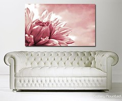 FLOWER HEAVEN PINK (Canvas Art Shop) Tags: flowers art floral wallart posters prints homedecor flowerart floralprints canvasart canvasprints flowerprints flowerwallart flowercanvasprints flowercanvasart