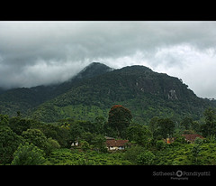 bonakkad1 (Satish Pandiyattil) Tags: forest kerala bonacaud bonakkad agasthyarkoodam