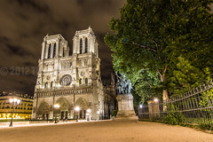 Notre Dame de Paris at its Garden at Night Time