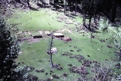 Summer Farm between Aru and Pahalgam, Kashmir