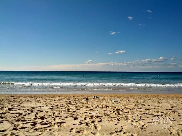 Meanly Beach, Sydney