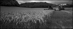 Your Daily Bread (Pixelsuzy) Tags: uk england tractor field clouds wheat grain harvest straw somerset stubble somerton