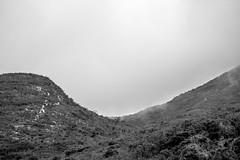 Curves (losacchi) Tags: travel brazil mountain minasgerais brasil trail espiritosanto picodabandeira manhumirim altodocapao altodojequitiba
