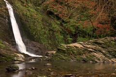 The White Lady Waterfall At Lydford Gorge, Lydford Near Tavistock In  Dartmoors National Park,Devon, England, Uk. (PANDOOZY PHOTOS) Tags: park england white west tree 30 lady river town waterfall britain south great devon national tru