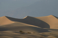 death valley (pacocult) Tags: deasertodeathvalley sabbiasolitudinehot52gradiusacalifornia