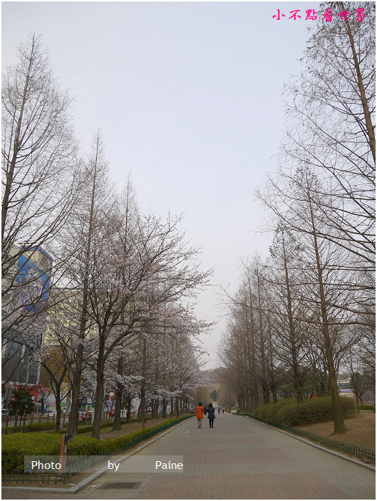 一山 湖水公園 (12).JPG