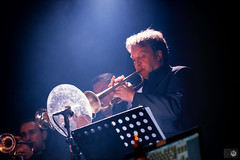Ed Sullivan Quartet XXL-9.jpg (bart_salembier) Tags: musician music nikon 60s stage band d750 nikkor sixties kortrijk schouwburgplein perfomance coverband sinksenfeesten sinksen theedsullivanquartet theedsullivanquartetxxl