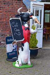 Cafe Cow. (Cycling Saint) Tags: sthelens merseyside victoriaparksthelens nikond750nikkor50mmg