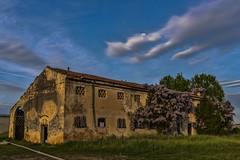 valli veronesi 160416_077 (gmcvrphoto) Tags: casa verona cielo rudere valli glicine abbandonata