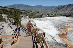 """Mammoth Hot Springs • <a style=""""font-size:0.8em;"""" href=""""http://www.flickr.com/photos/75865141@N03/27043474003/"""" target=""""_blank"""">View on Flickr</a>"""