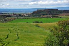 Monegros (Aragon/Espagne) (PierreG_09) Tags: espaa spain culture aragon agriculture paysage espagne spanien monegros gologie crales