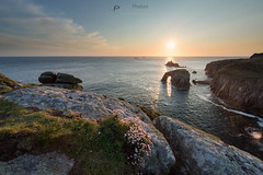 Lands End (T_J_P) Tags: pink flowers light sunset sea seascape rocks cornwall cliffs thrift landsend