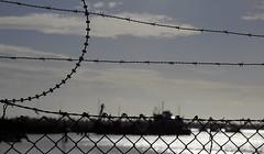 Wire (pedeypie3) Tags: adelaide gardenisland