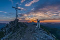Charly (Peter Zitt) Tags: clouds sunrise tirol sterreich wolken hund sonnenaufgang tannheimertal litnisschrofen nesselwngle