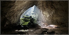 View from the doline 2 in Son Doong Cave (newcinc) Tags: cave binh quang sondoong biggestcave bestcave