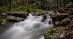 Cattai Creek (RoosterMan64) Tags: longexposure water waterfall au australia nsw newsouthwales castlehill leefilters cattaicreek