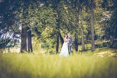 it's wedding time. (Anna Haslwanter - Photography) Tags: wedding green love nature happy couple happiness gras hochzeit liebe ehe brautpaar hochzeits hochzeitsfotografie