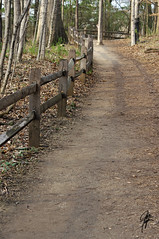 A happy fence Friday (jcdriftwood) Tags: eaglecreek eaglecreekpark fencefriday