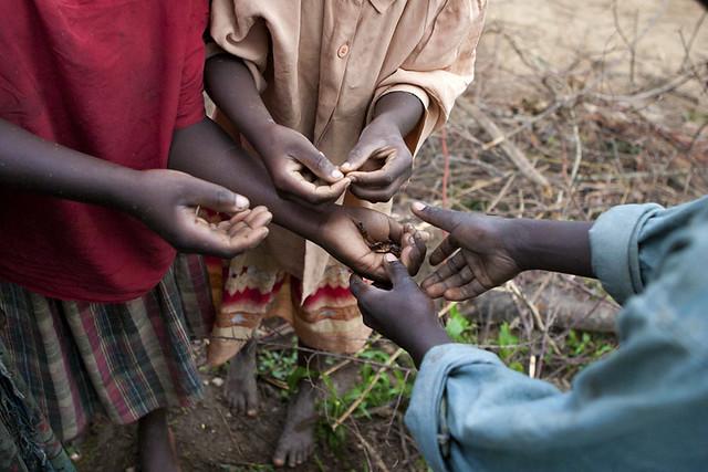africa-uganda-bugs-hands
