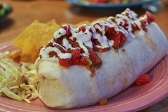 IMG_0036 (sheryip) Tags: bear black wv morgantown burritos blackbear