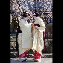 (Masahiro Makino) Tags: japan photoshop canon cherry eos kyoto blossoms maiko adobe    sakura  gion tamron weeping f28 lightroom   1750mm 60d mameharu  toshikana  20120404152448canoneos60dls640p
