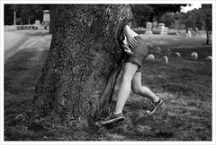 The Giving Tree (pantagrapher) Tags: bw chicago tree cemetery gbrearview birth graceland shenanigans bloomsday chicagoist