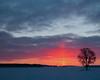 Winter Sunrise (Jack Pal) Tags: winter ontario colour flickr edited sunrises swontario photostatus mygearandme mygearandmepremium mygearandmebronze emotiveaffect flickrstruereflection1 flickrstruereflection2 flickrstruereflection3 trueexcellence1 rememberthatmomentlevel4 rememberthatmomentlevel1 rememberthatmomentlevel2 rememberthatmomentlevel3 pcobhuron