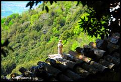 A Great Little Friar (*Sage* TokyoChicago) Tags: italy sculpture statue italia hermitage assisi umbria friar carceri eremo subasio