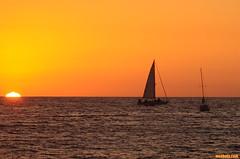 LikeShipsPassingInTheSunset (mcshots) Tags: ocean california sunset sea sky orange usa sun beach water evening coast losangeles stock socal sailboats mcshots