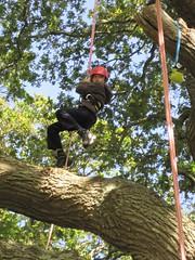 Aug55 (Goodleaf Tree Climbing) Tags: isleofwight treeclimbing goodleaf recreationaltreeclimbing
