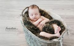 Swietliste-fotografia-artystyczna-sesje-niemowlece-Torun-kujawsko-pomorskie