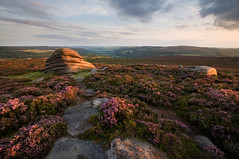 Heather on Over Owler Tor (Paul Newcombe) Tags: uk pink sunset summer england flower english rock landscape photography countryside nationalpark rocks purple heather derbyshire peakdistrict wideangle august flowering british peaks beehive warmlight gr