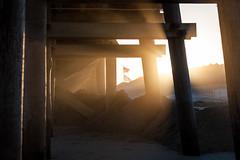 Old Glory (haddartist) Tags: wood light sunset sun beach grass sunshine fog fence coast pier wooden sand afternoon shadows dusk flag dune foggy atmosphere flags pole coastal oceanside rays pilings posts sunrays virginiabeach oceanfront sandbridge underthepier littleisland