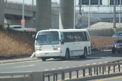 IMG_7910 (GojiMet86) Tags: new york city nyc bus buses golden airport touch 1988 jfk transportation expressway van rts 3510 wyck t70204