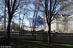 Cloud Gate from the park (V. C. Wald) Tags: chicago millenniumpark cloudgate thebean publicsculpture anshkapoor