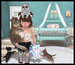 Crazy Cat Lady (delisadventures) Tags: summer cats shirt lady cat stars fun sweater spring crazy maple toddler kitten tank top kitty kittens skirt sl secondlife tiny crop second tied trinkets td tiptoes toddle croptop slblog slfashion slbabe secondlifefashion slkids slevents secondlifeblog slfamily seconlifefashion slfashionblogger slfashions slbaby slfashionblog tinytrinkets slblogger secondlifefashionblog toddleedoo toddleedoos slfashin tweeneedoo slbog slfashino slblogg toddleddoo tiptos