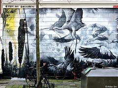Rotterdam Street art : ROBERT ROST (Akbar Sim) Tags: streetart holland netherlands rotterdam mural nederland rotjeknor robertrost akbarsimonse akbarsim