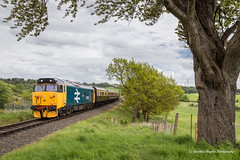 IMG_0102-1 (Nimbus20) Tags: tree shropshire diesel safari worcestershire severnvalley severnvalleyrailway 2016 class50 dieselgala