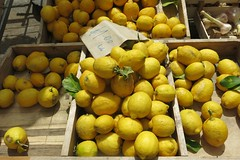 First Day of Summer Colours - Lemons in Catania's Market (Pushapoze - getting better) Tags: italia italy sicilia catania market marche mercato lemons citrons limoni