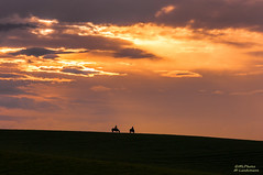 Ride over the fields (mlphoto) Tags: light sunset sky horse sun color nature field clouds landscape pentax silhouettes pentaxk20d mlphoto mlphoto markuslandsmannzenfoliocom