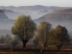 Valley Morn (II) (cormend) Tags: morning travel trees light mist tree trekking trek canon landscape eos dawn asia state hiking burma hike valley layers myanmar inle southeast shan touring birmanie kalaw 50d cormend