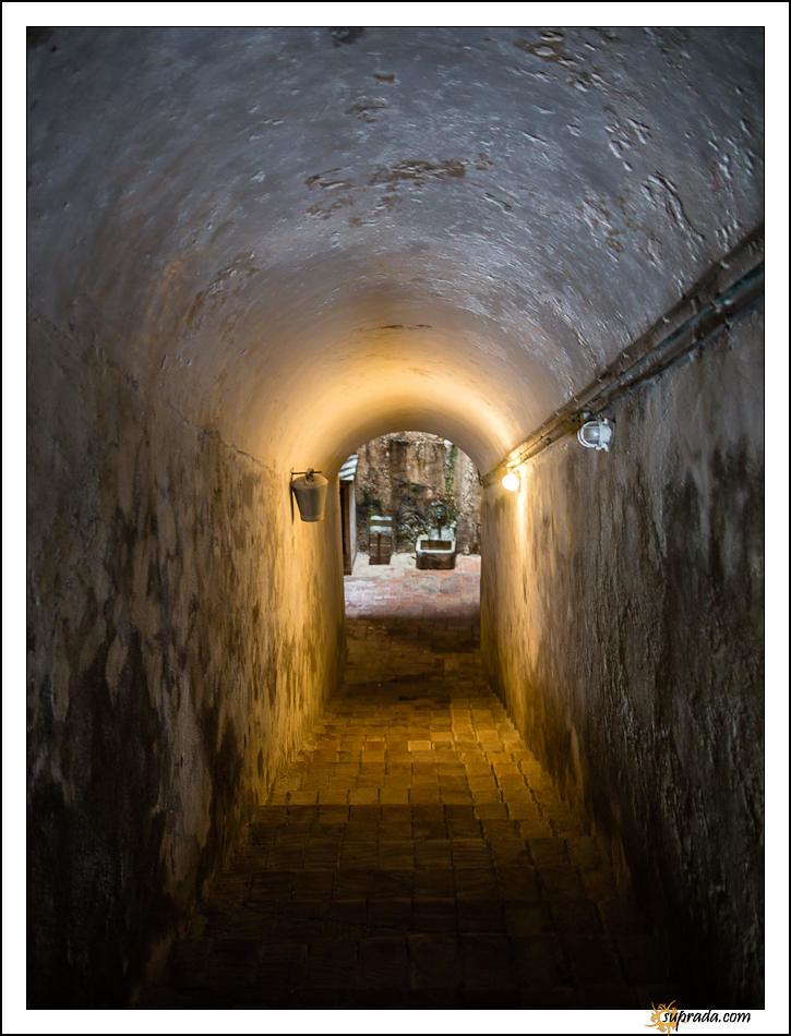 Down the cellar - Monastir de Pedrables