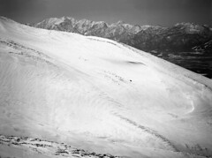 Big snow ridge (threepinner) Tags: winter ski mamiya japan diy spring north ridge   hokkaidou  selfdeveloped  northernjapan sekor neopanss 210mm  645e mttokachidake  mtbiei  mountainsnaps mtashibetsu  finedol diydeveolpment