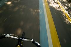 komorebi (noz.) Tags: bike japan tokyo sigma singlespeed steamroller surly jpn tokio foveon byke surlysteamroller dirtfix sigmadp1x dp1x