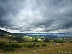 cheval 7 (Différents Regards - Fred Banchet) Tags: nature animal cheval nuage paysage rhonealpes